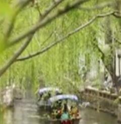 亚搏娱乐国际影像:春
