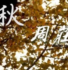 亚搏娱乐国际影像:秋
